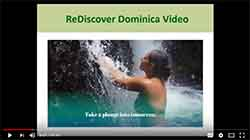Reintroducing Dominica