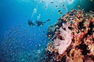 Silversea-scuba-Feb26