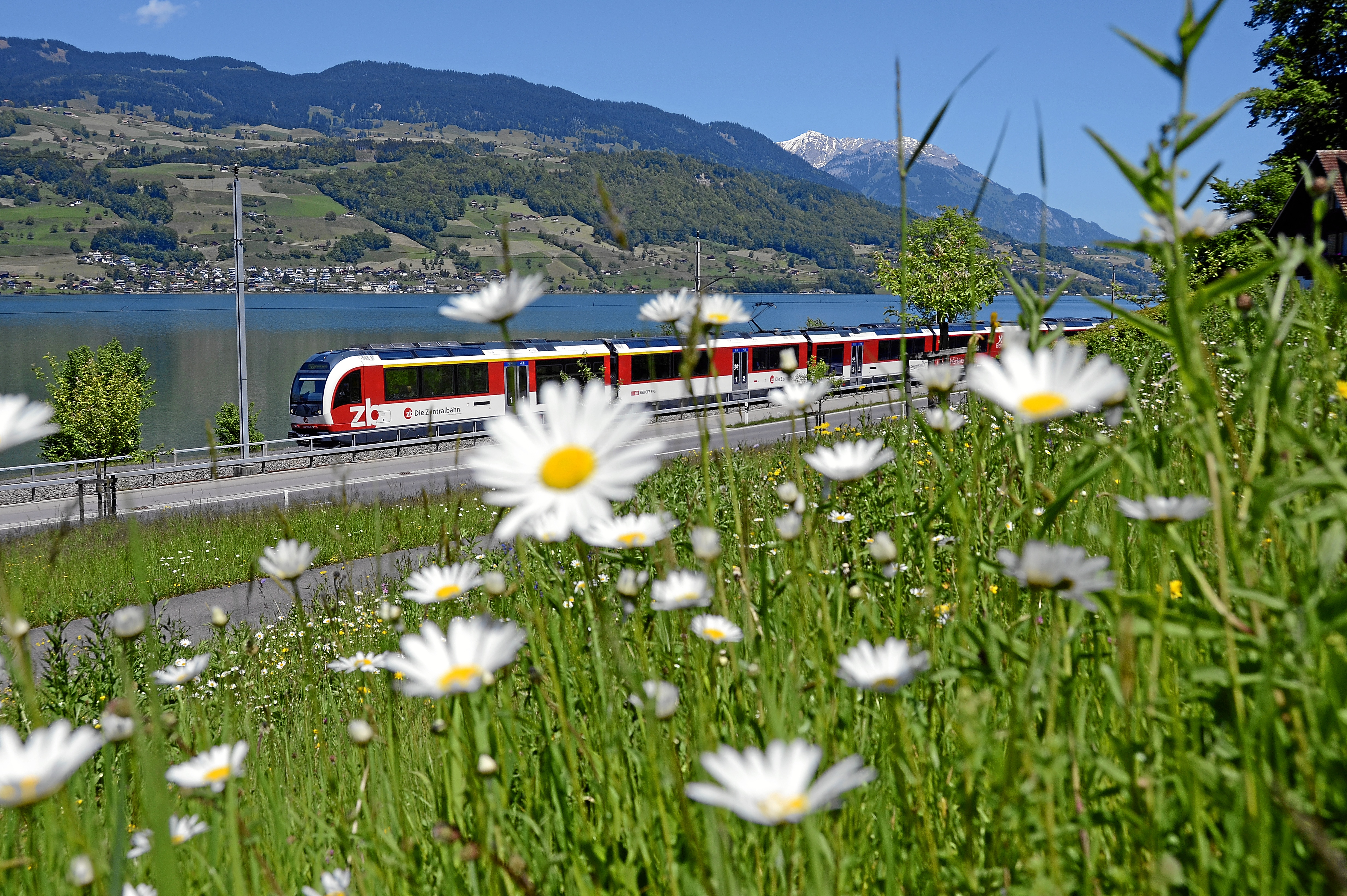 Swiss Train Travel Guide