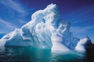 Peregrine Antarctica-May24
