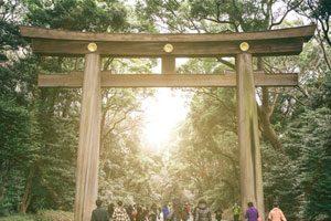 goway-japan-July20