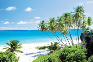 ACV-exotic-caribbean