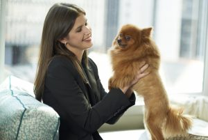 Kinzie Invites Travellers to Pamper Their Pooch