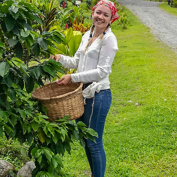 Take a sip of  Costa Rica  coffee tour