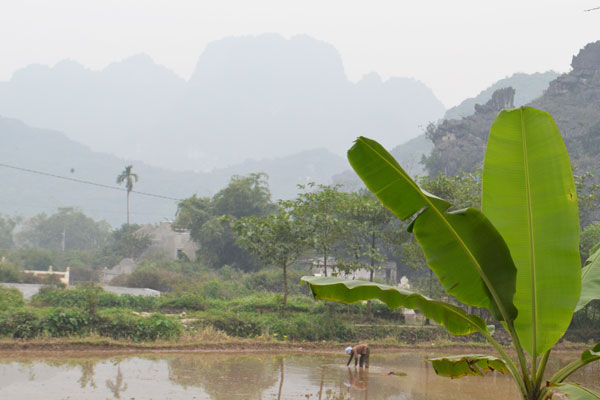 Vietnam Leads At ASEAN Tourism Forum