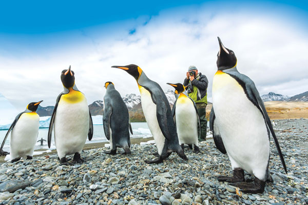 Lindblad Expeditions Offsets 100% of Emissions