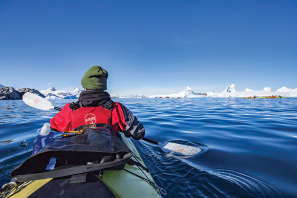 Intrepid Introduces Antarctica Savings
