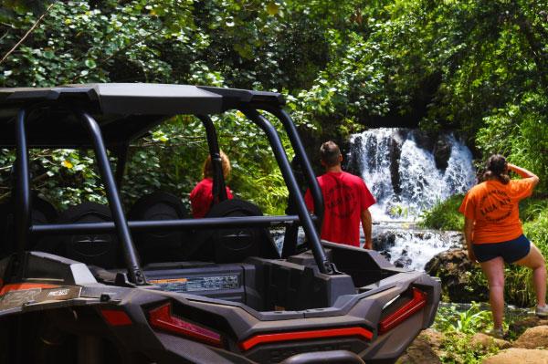 Tour Of Cave Reveals Fragile Ecosystem