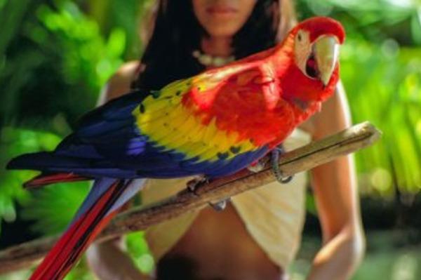 Quintana Roo Kickstarting Tourism