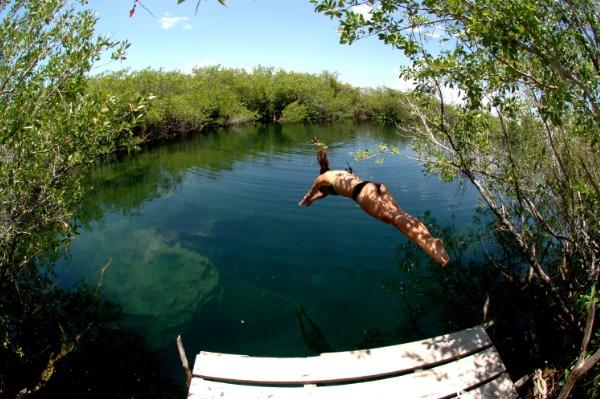 A Magical Dive Into Nature