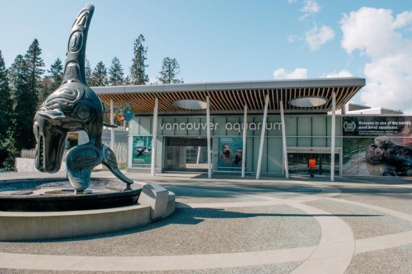 Vancouver Aquarium Pausing Public Programming