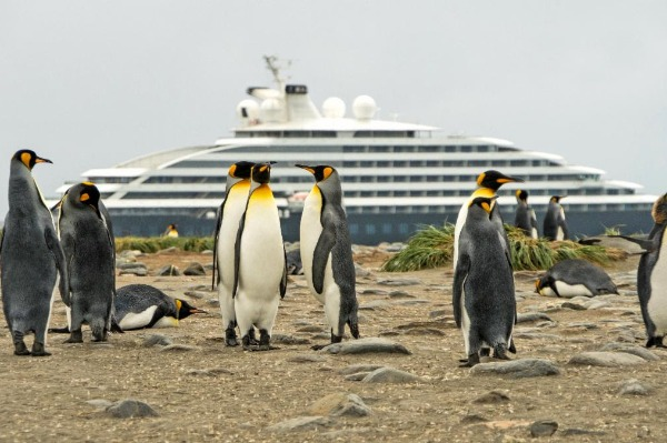 Scenic Eclipse Adds To Its Antarctica Experience