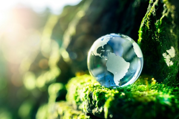 Sustainability Is At The Core For FCM